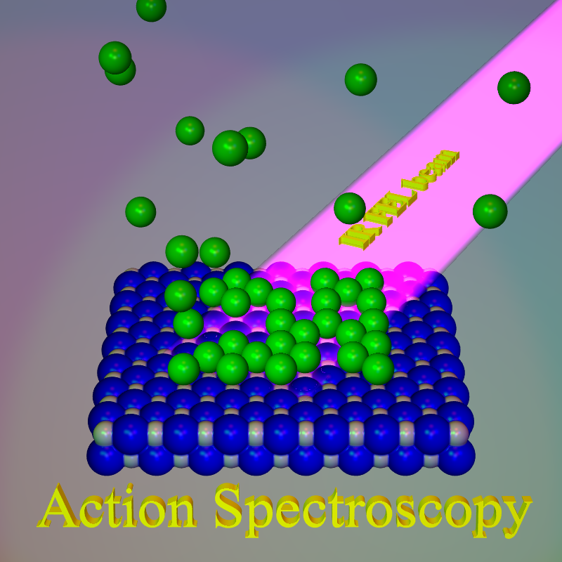 Surface action spectroscopy is a newly developed vibrational method. The investigated surface is covered with weakly bound atoms (the messengers) which are desorbed when infrared radiation [coming from the free electron laser (FEL) of the Institute] excites a vibration of the surface.